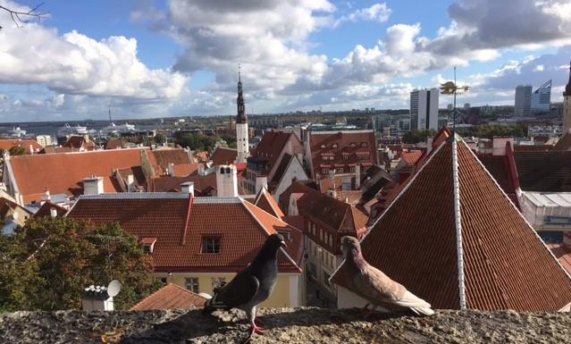 Estland – Et Land Med Enda Sterkere Korkultur Enn Norge